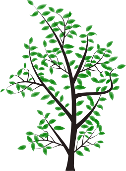 image of a tree depicting solidarity